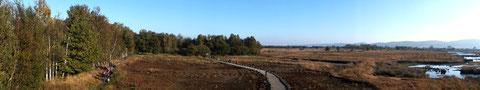 Das Hiller Moor