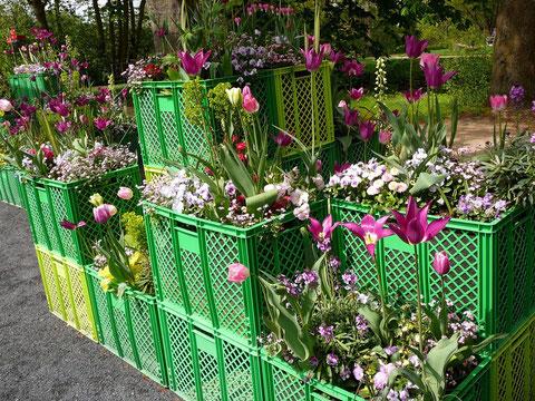 Die drei kleineren Bilder zeigen die Frühlingsbepflanzung - das große Bild wurde im Sommer gemacht!