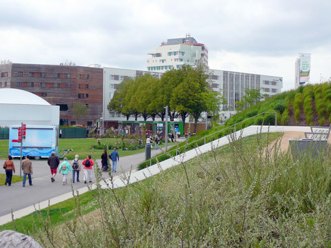 Blick zur kleinen Blumenhalle, zum Marktplatz und Wälderhaus