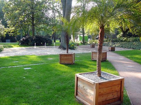 Der halbmondförmige Weg führt an Palmen entlang zum Paradies