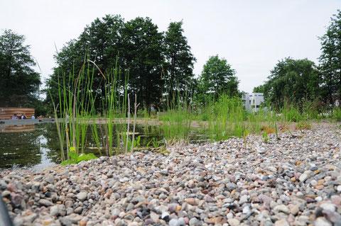 Ein Hoch-Teich auf Hüfthöhe ist schon eine gute Idee; -neue Über-Sicht!