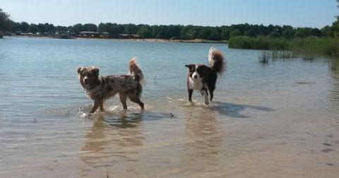 Meine Mädels beim Planschen an unserem See