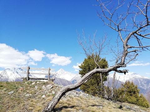 Aussicht aufs Bietschhorn