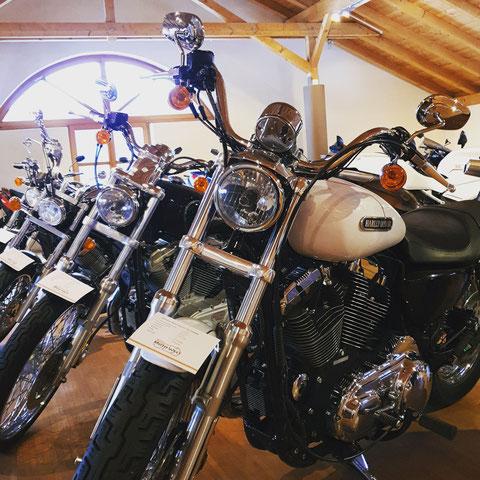 Chopper / Harley-Davidson