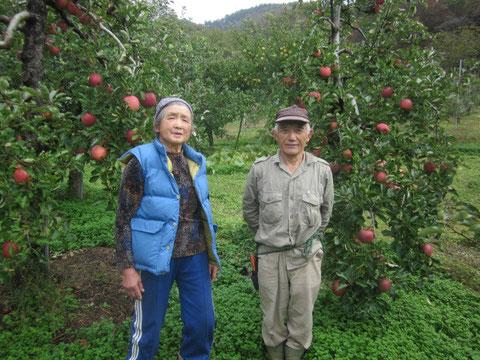 ↑生産者の細谷夫妻。じっち77歳、ばっぱ75歳