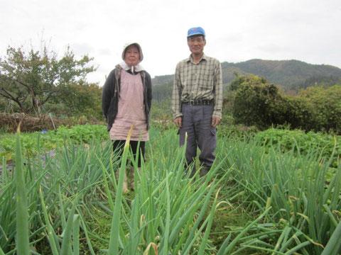 ↑色々な野菜を育てているお2人。この日は久々に一緒に写真を撮ったと喜んでいました