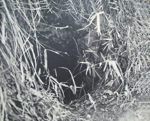 隠れ穴(昔の写真)