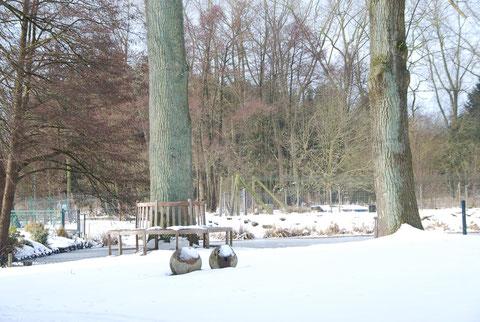 Teichlandschaft am Forellenhof Wilke,Foto: Angela Heinssen