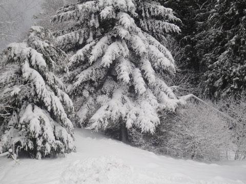 Ferienhütte im Winter