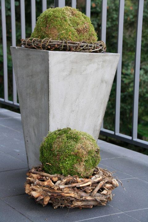 Moosbälle / Moss balls