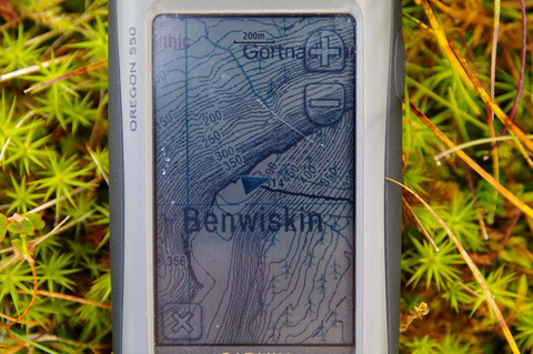Benwiskin