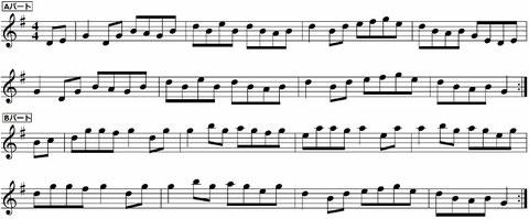 The Sally Gardens サリーガーデンズ アイリッシュハープ アイルランド フィドル 楽譜