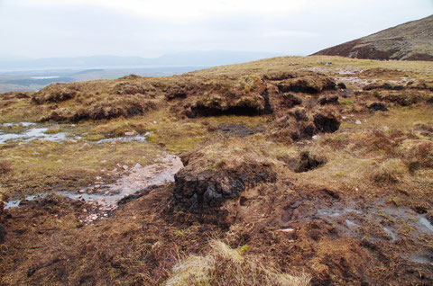 アイルランドの泥炭地