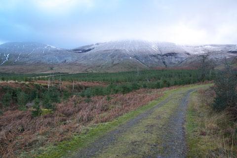 アイルランド・冬