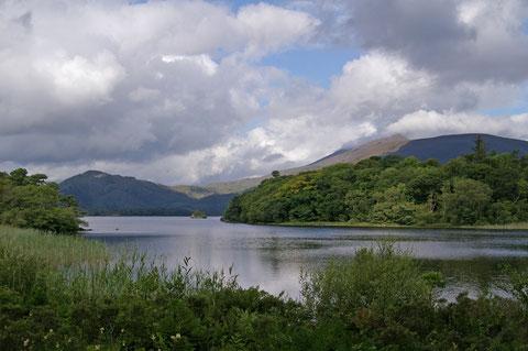 アイルランド マックロス湖