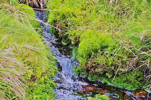 River Liffey リフィー川 ダブリン