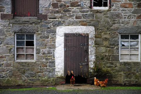 アイルランド 観光 旅行