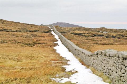 アイルランド 北アイルランド 旅行 ハイキング