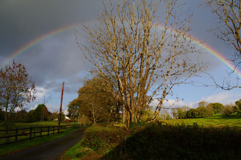 アイルランド 虹