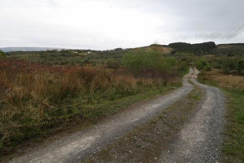 アイルランド 田舎 村