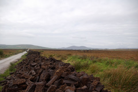 アイルランド 泥炭