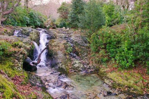 アイルランド 北アイルランド 旅行 ハイキング 沢 川