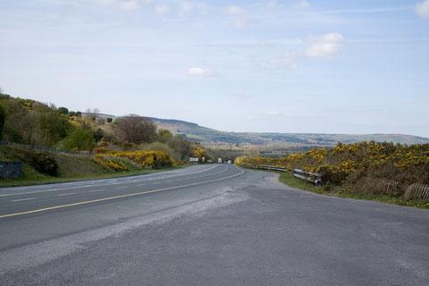 アイルランド 国道