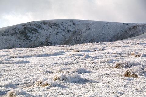 アイルランド 冬