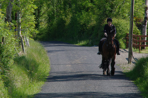 アイルランド 乗馬