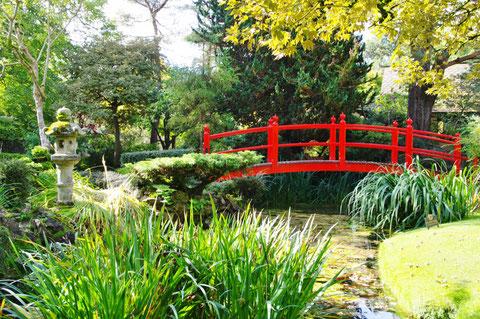 アイルランド 日本庭園 キルデア