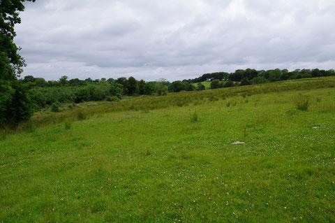 アイルランド 自然 風景