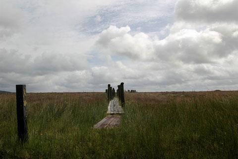アイルランド ウォーキング