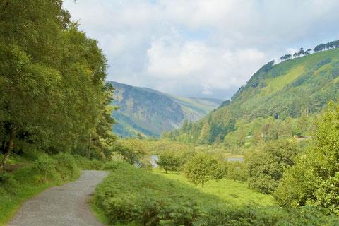 アイルランド - ウォーキング - 自然 - 景色