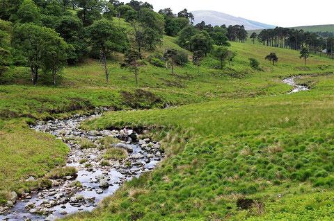 River Liffey  リフィー川 アイルランド