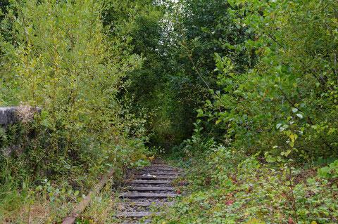 アイルランド 廃線 線路