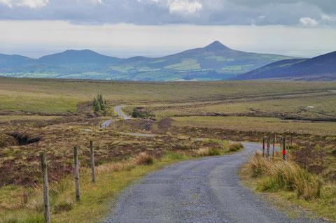 アイルランド 自然