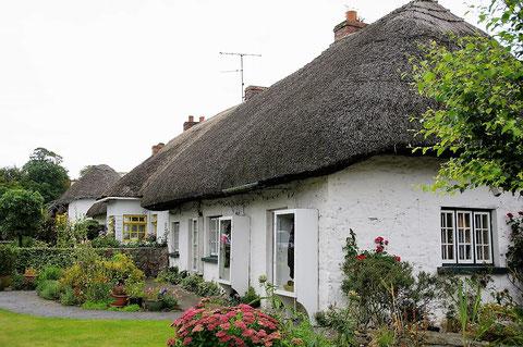 アイルランド 茅葺屋根
