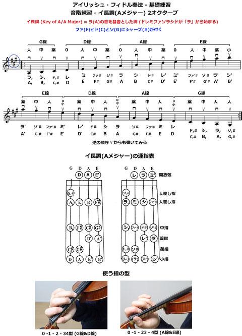 フィドル 運指 ヴァイオリン