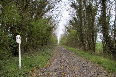 アイルランド 廃線