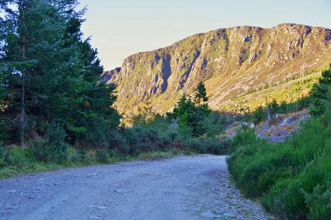 アイルランド 田舎 ハイキング