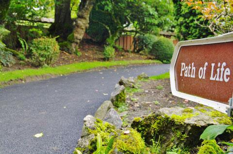アイルランド 日本庭園 キルデア州
