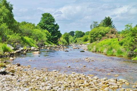 River Liffey  リフィー川
