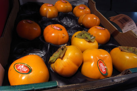 アイルランド 柿