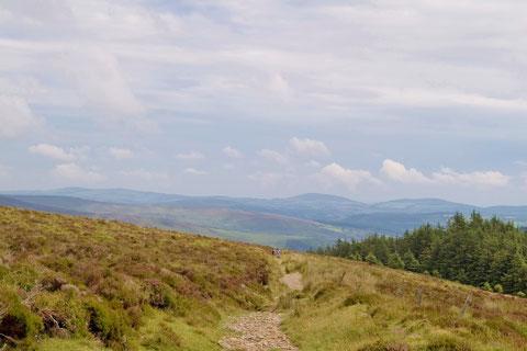 アイルランド - 田舎 - 景色