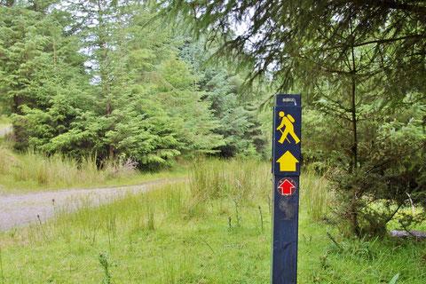 アイルランド - ウォーキング - ハイキング