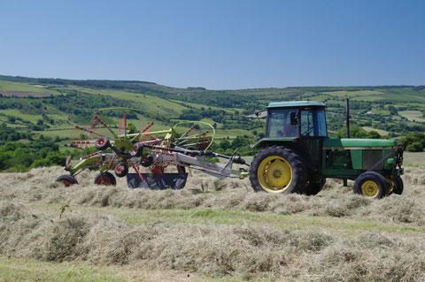アイルランド 農作業