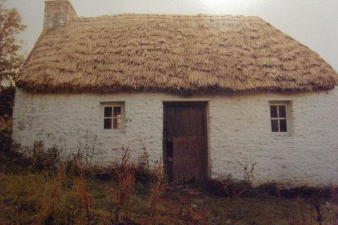 ビディ・アーリーの小屋
