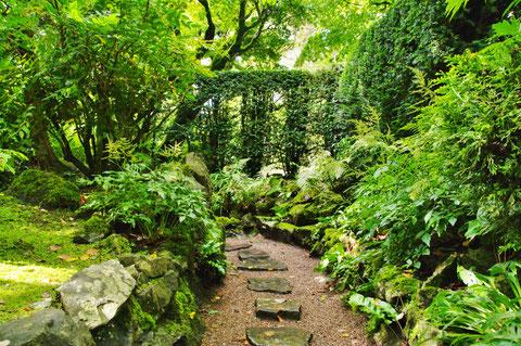 アイルランド ジャパニーズガーデン 日本庭園