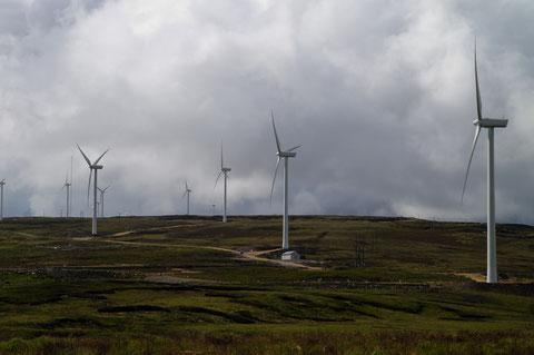 アイルランド風力発電所