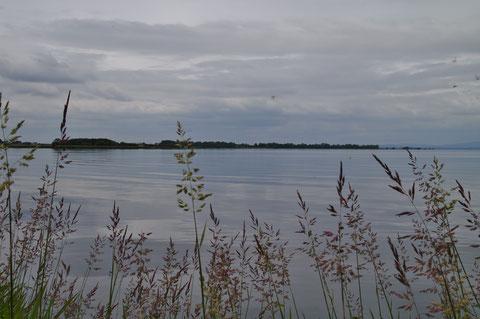 アイルランド ネイ湖